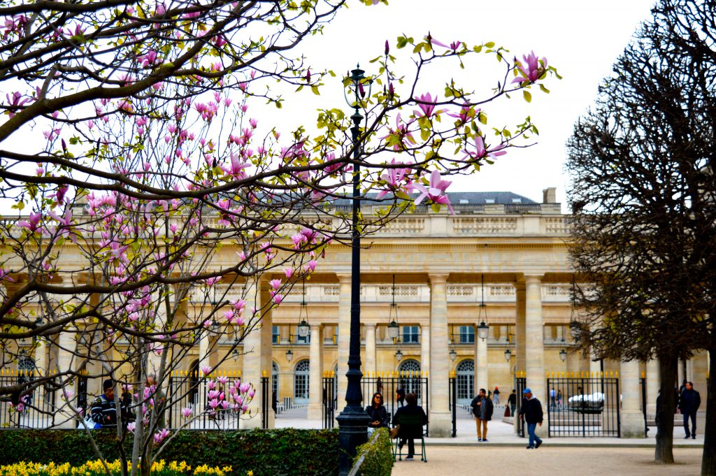 6. Jardin du Palais Royal