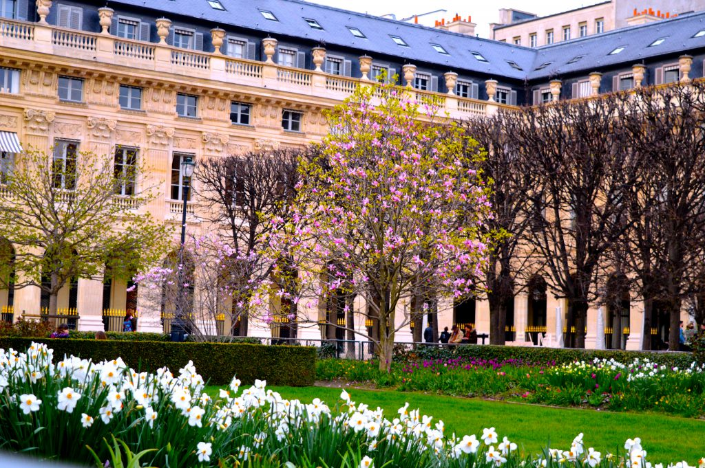 7. Jardin du Palais Royal