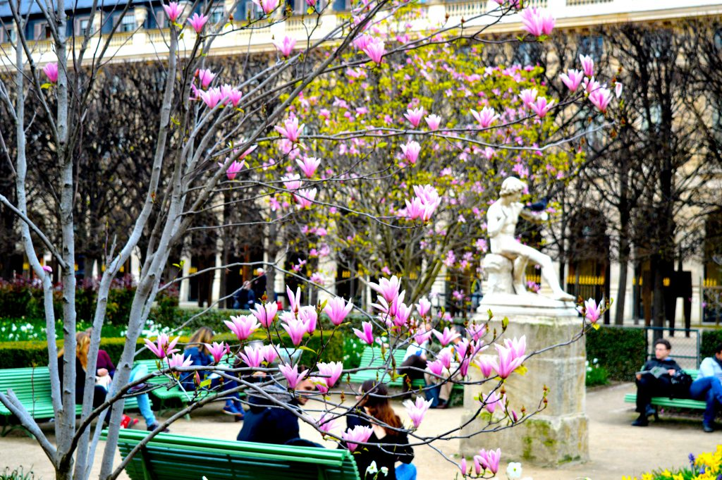 8. Jardin du Palais Royal